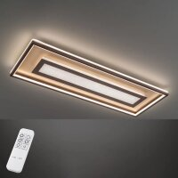 Fischer&Honsel Bug Premium LED Deckenleuchte110X40...